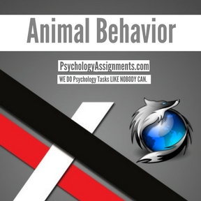 Animal Behavior Assignment Help