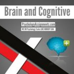 Brain and Cognitive