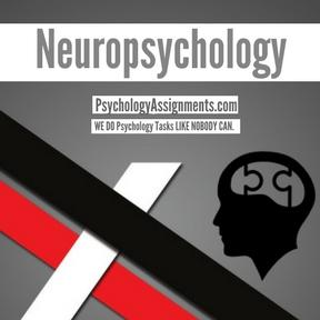 Neuropsychology Assignment Help