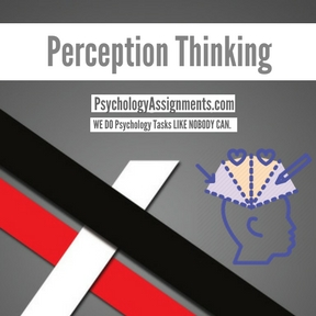 Perception Thinking Assignment Help